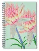 Blush Of Pink Spiral Notebook