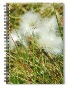 Bog Cotton On The Moor Spiral Notebook