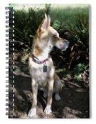 Bowie Spiral Notebook