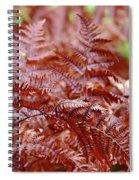Bracken Fern Spiral Notebook
