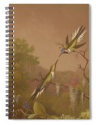 Brazilian Hummingbirds II Spiral Notebook
