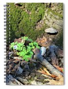 Breeches, Mushrooms And Moss Spiral Notebook