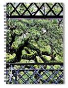 Bridge Through Live Oaks Spiral Notebook