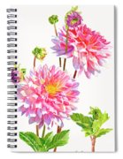 Bright Pink Dahlias With Buds Spiral Notebook