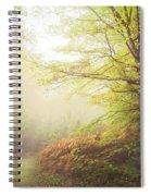Broceliand Path Spiral Notebook