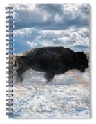 Buffalo Charge.  Bison Running, Ground Shaking When They Trampled Through Arsenal Wildlife Refuge Spiral Notebook