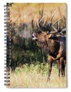 Bull Elk 3068 Spiral Notebook