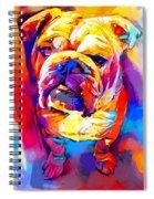Bulldog 4 Spiral Notebook