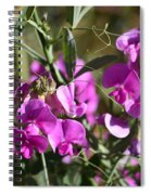 Bunch Of Pink Sweet Peas In The Sun Spiral Notebook