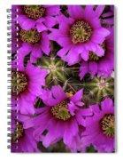 Burst Of Fuchsia Cactus Flowers Spiral Notebook