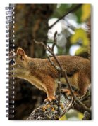 Bushy Tailed  Spiral Notebook