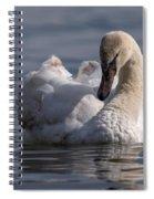 Busking Cygnet Spiral Notebook
