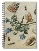 Butterflies, Clams, Insects Spiral Notebook