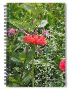 Butterfly Before Flight Spiral Notebook