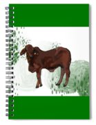 C Is For Cow Spiral Notebook