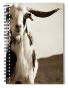 Cabra De Fuerteventura Spiral Notebook