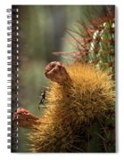Cactus With Beetle Spiral Notebook