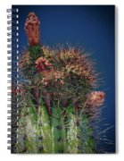 Cactus With Pink Flower Spiral Notebook