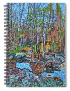 Cade's Land Trail Along The Eno Spiral Notebook