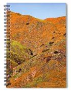 California Poppy Hills Spiral Notebook