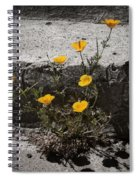 California Poppy Trying Spiral Notebook