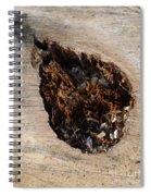 Canal Stumps-018 Spiral Notebook