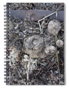 Canal Stumps-027 Scabs Spiral Notebook