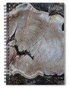 Canal Stumps-058 Spiral Notebook