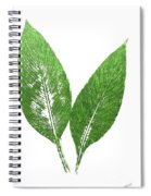 Cannas Leaves Spiral Notebook