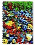 Canton Central 16 Spiral Notebook