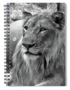 Captive Spiral Notebook