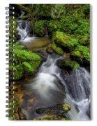 Cascades Of Lee Falls Spiral Notebook