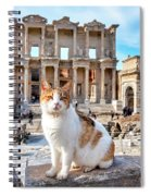 Cat In Front Of The Library Of Celsus Spiral Notebook