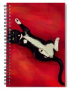 Cat N Spiral Notebook