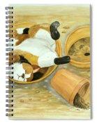 Cat Sleeping In The Sun. Spiral Notebook