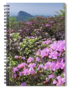Catawba Rhododendron Table Rock  Spiral Notebook