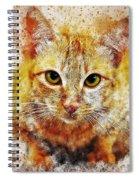 Cat's Eye Spiral Notebook