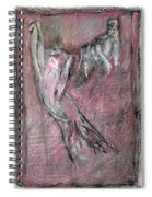 Cats In A Living Room Spiral Notebook