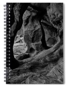 Cavern Of Lost Souls Spiral Notebook