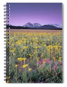 Central Idaho Color Spiral Notebook
