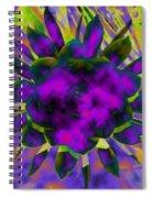 Cereusly Solarized Spiral Notebook