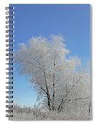 Cherohala Magic Spiral Notebook