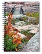 Chikanishing Trail Boardwalk Spiral Notebook