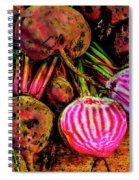 Chioggia Beets Spiral Notebook