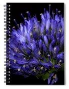 Chives Flower Spiral Notebook