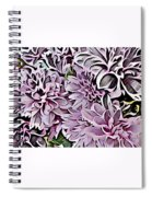 Chrysanthemum Abstract. Spiral Notebook