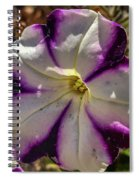 Circle Of Purple Spiral Notebook