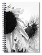 Classic Sunflowers Spiral Notebook