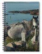 Cleggan Connemara Spiral Notebook