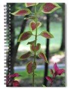 Coleus Spiral Notebook